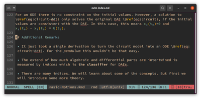 Screenshot of an editor with markdown support.